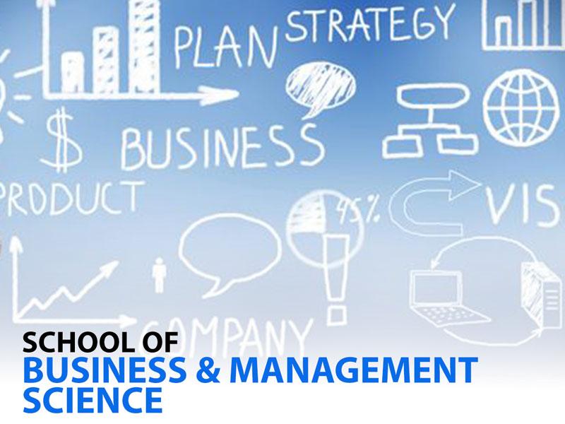 Business & Management Sciences