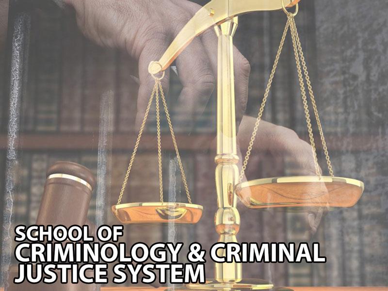 Criminology & Criminal Justice System
